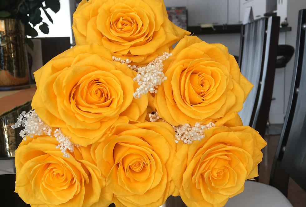6 Rosas Premium 2