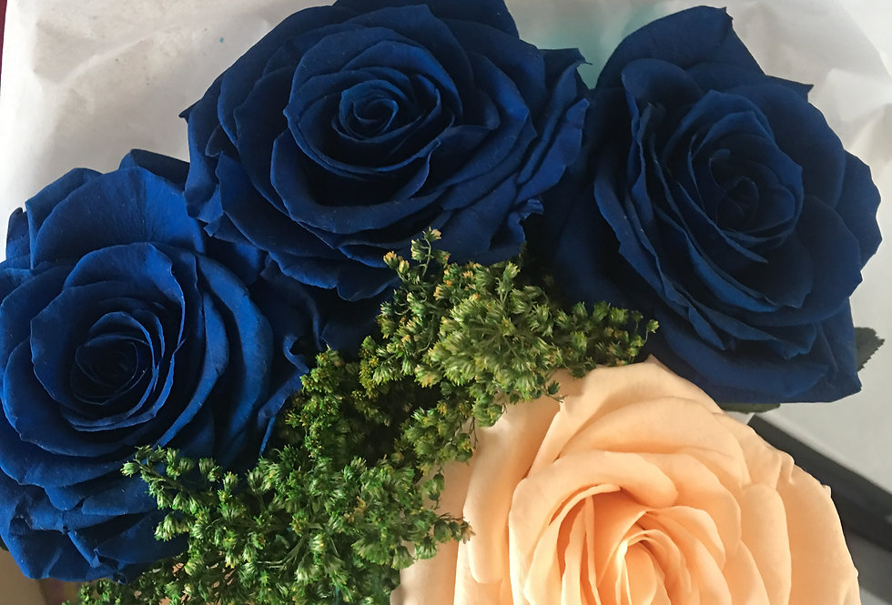 4 Rosas, 2 Colores