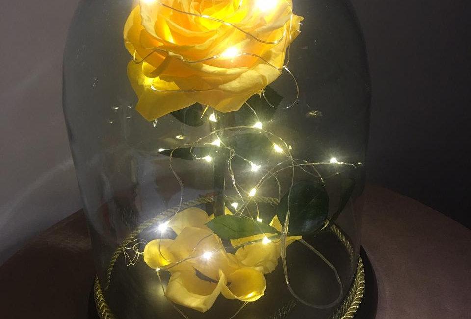 Flor Bella Cúpula Mediana Iluminada (27x20cm)