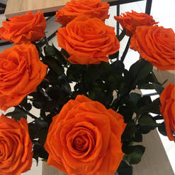 Ramo 9 rosas premium $225.000 LIV.jpg
