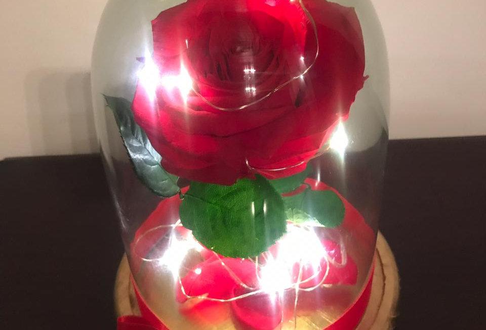 Flor Bella Iluminada Cúpula Pequeña (22x16cm)