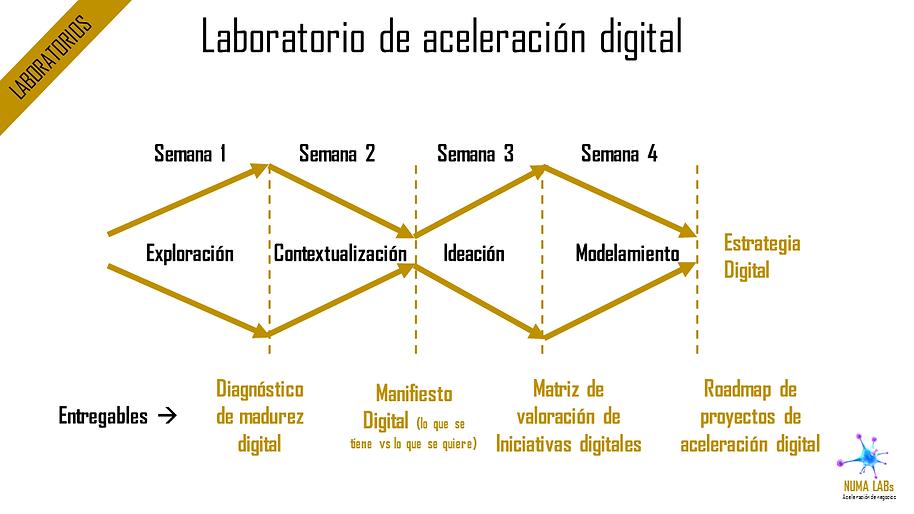 Laboratorios de Aceleración Digital | NUMA LABs