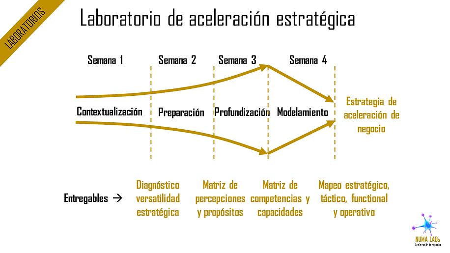 Laboratorios de Aceleración Estratégica | NUMA LABs