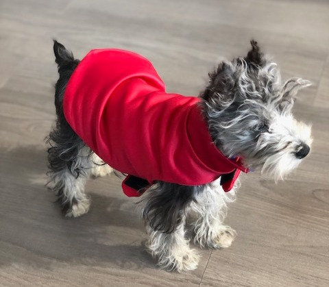 PEPPER HOLIDAY JACKET