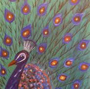 Colorful_Peacock.jpg