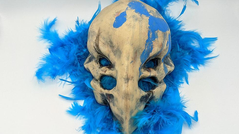 Wandering Bird Skull