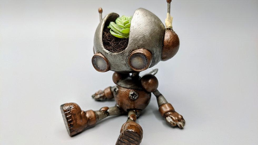 Bucket, the robot planter