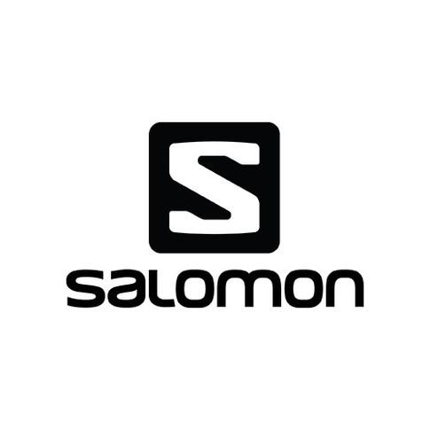 salomon web.jpg
