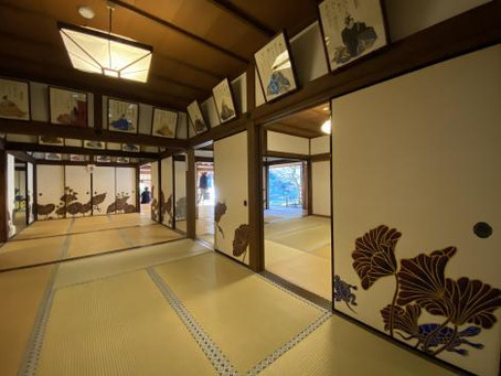 石塀小路ランチと八坂神社・青蓮院門跡 2020.1