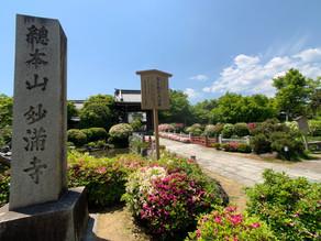 妙満寺・貴船神社・鞍馬寺 2019.5