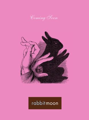 rabbit-moon-5.png