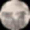 Profile & Logo 4.PNG