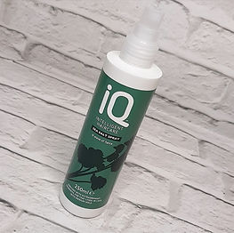 IQ Hair Sea Salt Spray.jpeg
