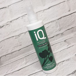 IQ Hair Structure Spray.jpeg