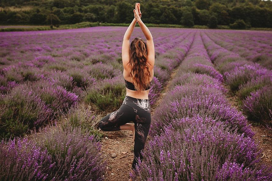 lavender yoga 2.JPG