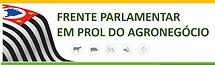 1Poster Frente Parlamentar ALESP-CNIPEA.
