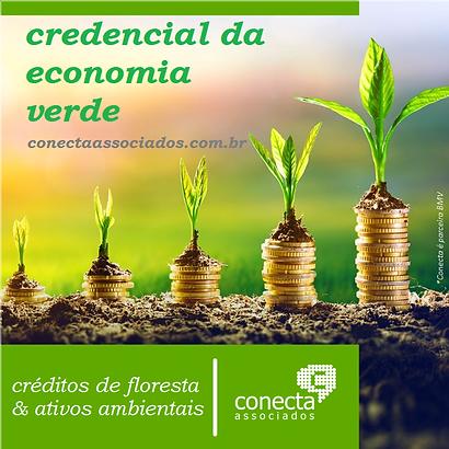 economia verde conecta.png