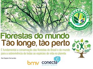 florestas.png