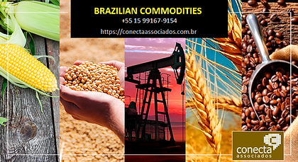 conecta commodities 2020.png