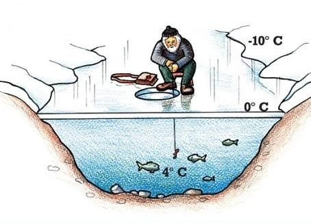 Anomalie van water