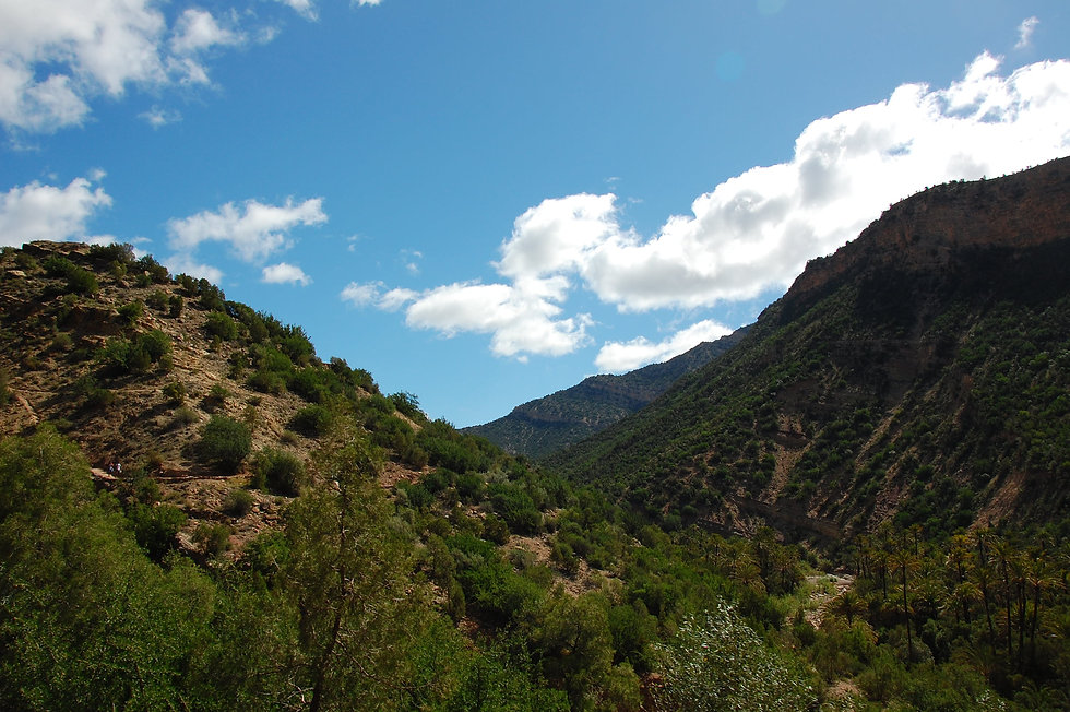 Hills of Morocco Cory Gehm Yoga.JPG