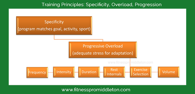 The Principles Of Training Specificity Overload And