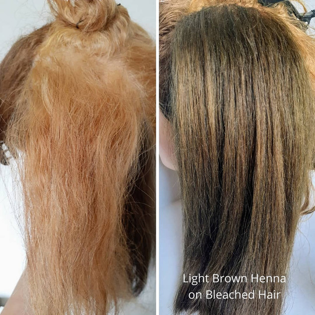 Hair Repair with Herbs