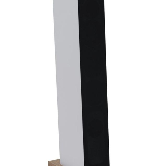 courbet N°5 blanche avec le cache
