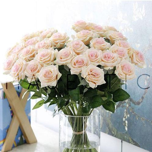 Роза / Rose