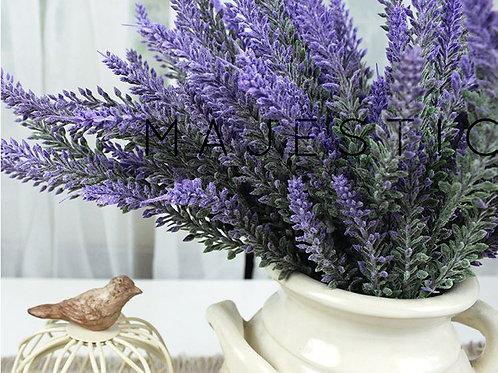 Лаванда / Lavender