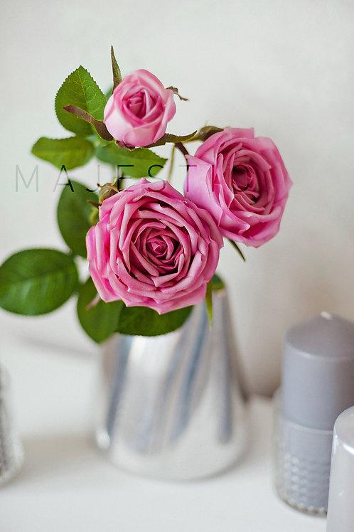 Роза пионовидная 3 цветка / Rose with 3 flower heads