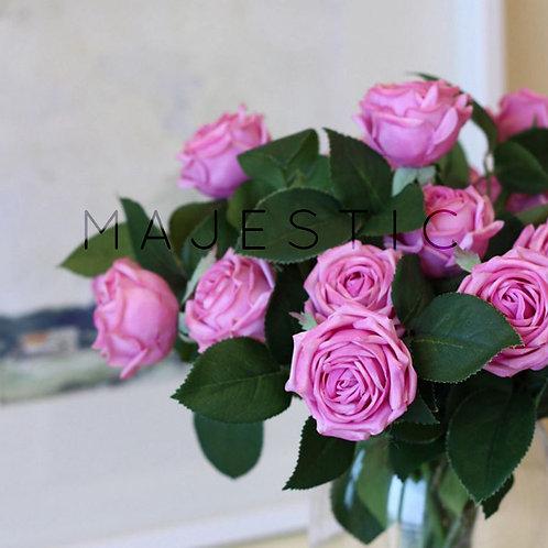 Роза пионовидная двойная / Peony Rose