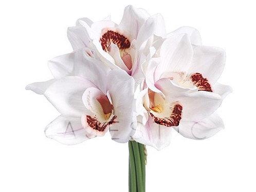 Орхидея цимбидиум букет / Cymbidium orchid