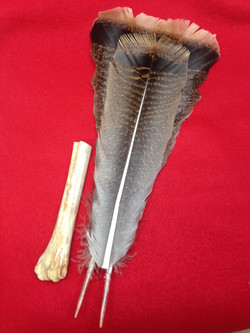 Handle and fan feathers