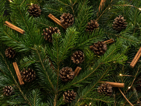 5 ideas for a more climate-friendly Christmas