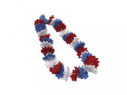 COLLAR FLORES TRICOLOR CHILE X12