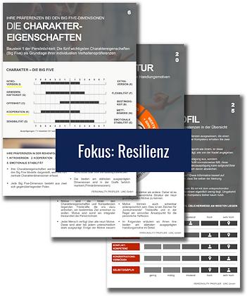 Basisprofil Fokus: Resilienz
