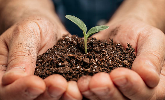 close-up-male-hands-holding-soil-little-