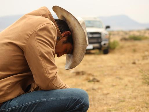 No Man's Land film review