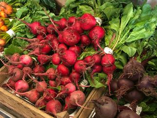 Solar Food – local veggies and lamb