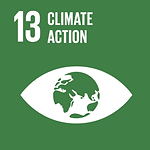act2020_sdg13_climateaction.png