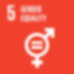 act2020_sdg05_genderequality.png