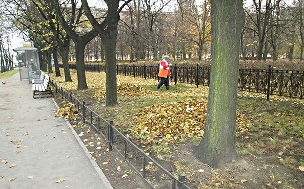 Осенний месячник
