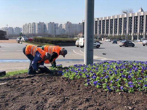 Московский район украсили первые цветники
