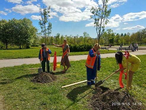 Участницы конкурсов красоты посадили деревья в Пулковском парке