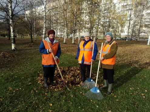 Осенний День благоустройства пройдет в Петербурге 22 октября