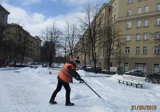 Садово-парковые предприятия Петербурга предупреждены о сильном ветре