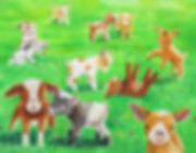 BabyGoatsFinalWebsite.jpg