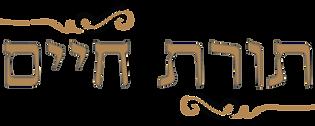 Yeshivas Toras Chaim Logo