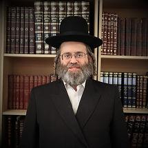 Harav Dovid Schleisinger